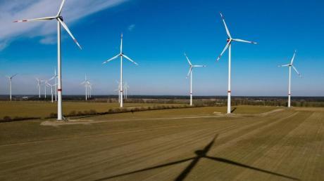Der Windpark «Albertshof» der Berliner Stadtwerke in Brandenburg. Geht es nach Umweltministerin Schulze sollen viel mehr solcher Windparks entstehen.