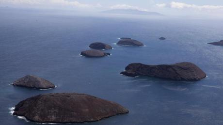Auf den Galapagos-Inseln trifft man auf eine einzigartige Artenvielfalt. Nach einem Schiffsunglück tritt allerdings Diesel aus, der die Natur bedroht.