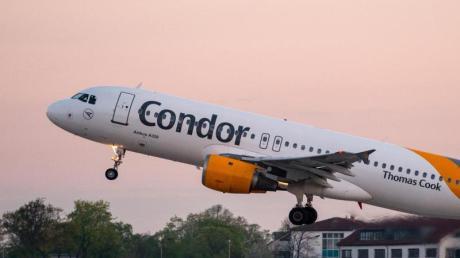 Condor erweitert sein Streckenangebot ab Düsseldorf. Von dort aus steuert die Airline im nächsten Winter auch die Karibik an. Foto: Patrick Pleul
