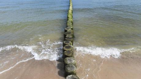 An der Küste vor Usedom hat das Wasser diese Woche wieder über 20 Grad erreicht. Foto: Stefan Sauer/Archiv