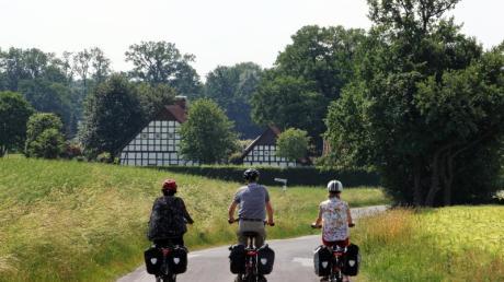 Radfahrer auf der Friedensroute bei Bad Iburg - die Strecke hat kaum Höhenmeter. Foto:Bernd F. Meier