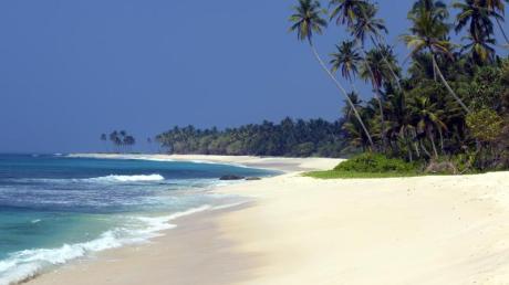 Strände und Palmen am Indischen Ozean: Wer Urlaubsziele wie den Bentota Beach auf Sri Lanka besuchen möchte, muss als EU-Bürger bei der Einreise künftig keine Visumsgebühr mehr bezahlen. Foto: Sri Lanka Tourism Promotion Bureau