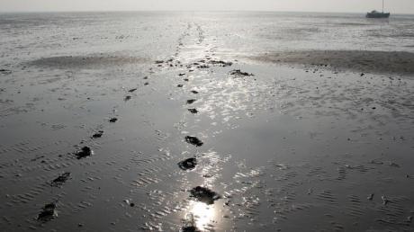 Solche Schlickfelder wirken harmlos. Kommt das Wasser zurück, können sie aber den sicheren Weg nach Hause versperren.