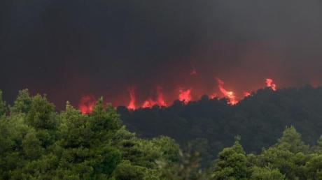 Nach wochenlanger Dürre und bei starken Winden sind zahlreiche Waldbrände ausgebrochen. Foto: Yorgos Karahalis/AP