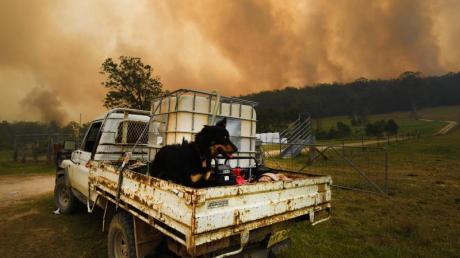 Rauch steigt über einem Gebiet außerhalb von Nana Glen während der Buschfeuer auf. Foto: Dan Peled/AAP/dpa