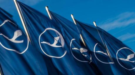 Fahnen mit dem Logo der Fluggesellschaft Lufthansa wehen auf dem Flughafen der Mainmetropole im Wind.