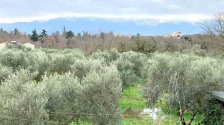 Olivenhaine, wolkenverhangener Himmel und schneebedeckte Gipfel am Horizont: Im Winter präsentiert sich Kreta von einer anderen Seite.