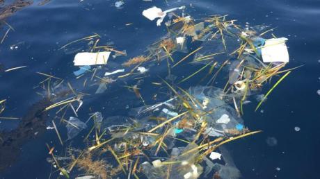 Um den Massen an Plastik und Einwegverpackungen Herr zu werden, haben die Balearen seit Anfang des Jahres ein neues Gesetz.