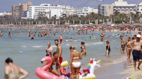 Mit dem Veranstalter nach Mallorca und Co.:Mit den Dienstleistungen bei Pauschalreisen sind Kunden laut einer Umfrage in der Regel zufrieden.