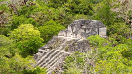 Das Highlight der Maya-Stadt Tikal ist die große Pyramide.