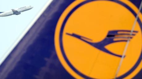 Das Logo der Deutschen Lufthansa ist auf einem Flugzeug am Flughafen Frankfurt am Main zu sehen.