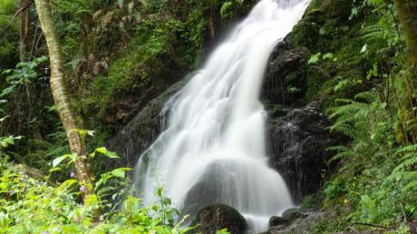 Natur pur im Baztan-Tal: kleine Kaskade nahe dem Wasserfall Xorroxin.