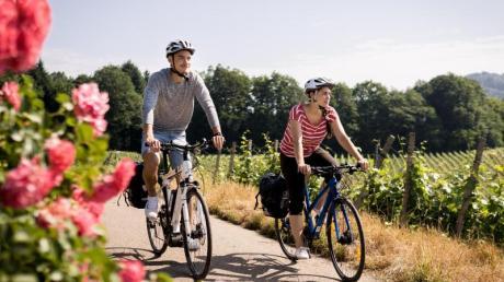Der Badische Weinradweg ist seit diesem Frühjahr für Radwanderer ausgeschildert.