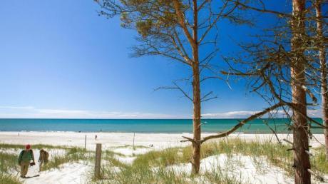 Der Weststrand auf der Ostsee-Halbinsel Fischland-Darß-Zingst ist einer der schönste Strände Europas.