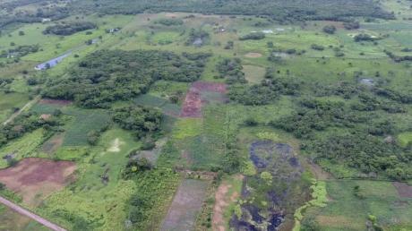 Im Süden von Mexiko haben Forscher die älteste und größte bisher bekannte Monumentalanlage der Maya aufgespürt.