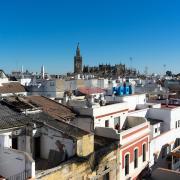 20170116_131404_06_Sevilla.JPEG