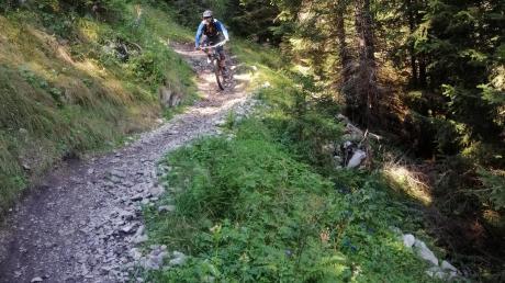 Auf schmalen Wegen unterwegs. Mountainbiker sorgen auch für Konfliktstoff.