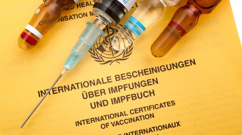 Bislang gibt es in Deutschland nur den Impfpass aus Papier.