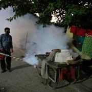 Ein Mitarbeiter der indischen Gesundheitsbehörden besprüht eine Straße, um die Ausbreitung von Krankheiten die durch Mücken übertragen werden, zu bekämpfen.