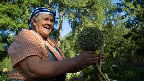 Eine Frau vom Volk der Mapuche erzählt über Heilkräuter.