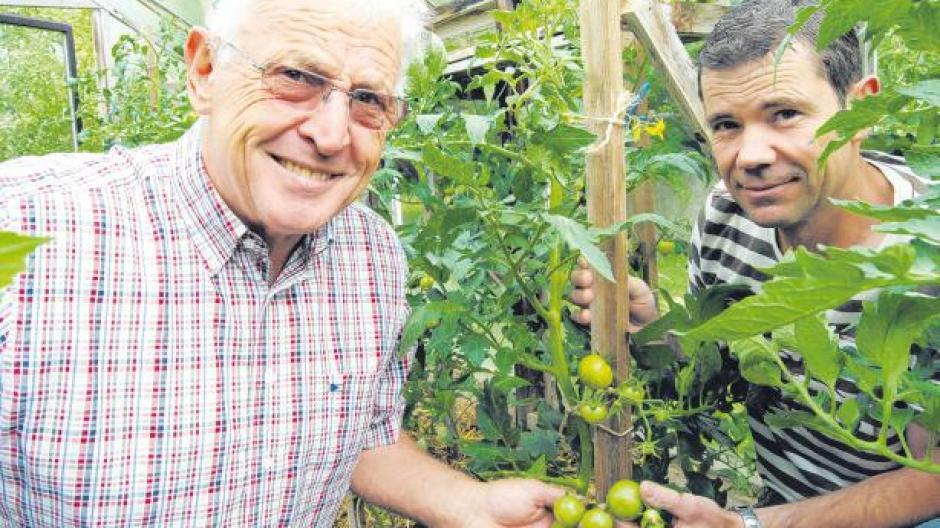 Gemüsewettbewerb Wer Hat Die Größte Tomate Nachrichten
