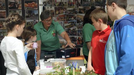 Für Waltraud Egger von Gartenbauverein (Mitte) ist es wichtig, junge Menschen für die Natur zu interessieren. Auch dazu nutzte sie den Tag der Vereine.