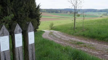Einige Feldwege der Mittelneufnacher Flur sind erneuerungsbedürftig und sollen demnächst saniert werden.