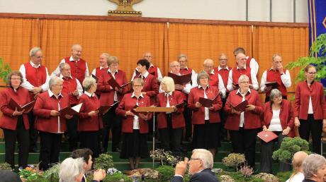 Der Chor Liederhain Langenneufnach wagt sich an Neues: Erstmals präsentiert er ein Gospelkonzert, rechts die neue Chorleiterin Katharina Hartl.