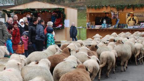 Auch der Staudenschäfer kommt wieder zum Adventstreffen, das am Samstag im Schlosshof von Mickhausen stattfindet.