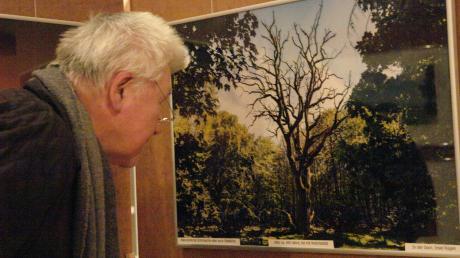 """Die Besucher der Ausstellung im Bürgersaal nahmen die Fotos - hier Frank Liebes """"Schirmeiche in Goor auf Rügen"""" - genau unter die Lupe."""