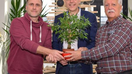 Stephan Hartinger (links) und Helmut Lang (rechts) überreichen Bürgermeister Andreas Scharf symbolisch vor dem nachhaltigen Weihnachtsbaum des Unternehmens eine Pflanze stellvertretend für die 1000 Bäume.