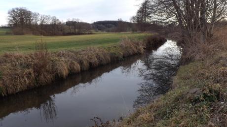 Der Gemeinderat erteilte jüngst sein Einverständnis für die Renaturierung dieses Teilstücks der Neufnach südlich der Rohrwiesbrücke beim Walkertshofener Sportplatz.