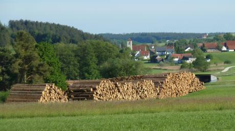 Ein imposanter Anblick: Dorf und Kirche von Münster (im Hintergrund) ducken sich hinter den gigantischen Holzpoltern.