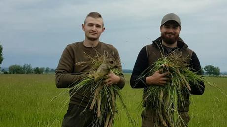 Mit einer Drohne suchen Tobias Baumgartner (links) aus Langerringen und Alexander Bader (rechts) die Felder nach Rehkitzen ab.