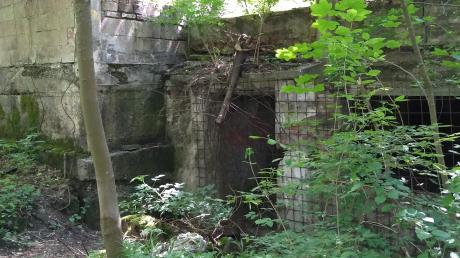 Erst Sprengstofflager, dann Tanzcafé – heute erinnert nur noch eine Ruine des Bunkercafés an die Vergangenheit, die sich am Fuß des Leitenberges abspielte.