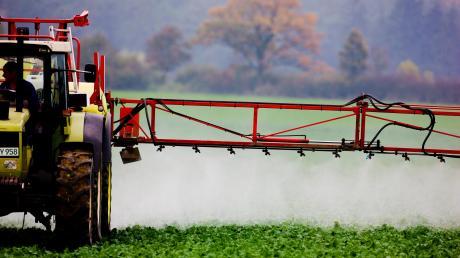 Die Königsbrunner Stadträte haben über den Verzicht auf Pestizide bei Pachtflächen diskutiert.