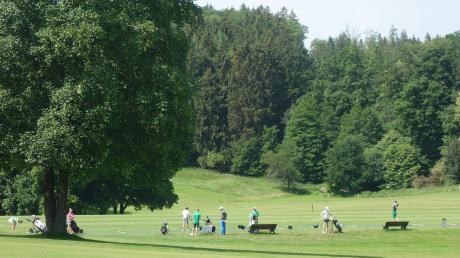 Naturschützer und die Dorfgemeinschaft des Bobinger Ortsteils Burgwalden protestieren gegen eine geplante Flutlichtanlage auf dem Golfplatz. Nun war das Projekt Thema im Landtag.