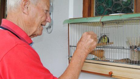 Vogelfachmann Rupert Reichinger päppelt die Blaumeisenküken liebevoll auf – bis sie fit genug sind, in Freiheit zu überleben.