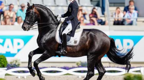 Helen Langehanenberg auf ihrem Pferd Damsey.