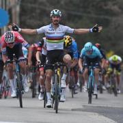 Straßenrad-Weltmeister Julian Alaphilippe. Wer siegt 2021 bei den UCI-Straßen-Weltmeisterschaften in Belgien? Zeitplan, Termine und Übertragung im TV und Stream.