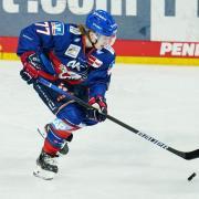 Deutsche Eishockey Liga (DEL): Übertragung live im TV und Stream, Sender, Free-TV - lesen Sie hier alle Infos. Im Bild: Florian Elias von Adler Mannheim.