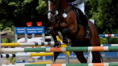 Sie kommt als bayerische Meisterin zu den schwäbischen Meisterschaften auf den Ulrichshof nach Königsbrunn: Amelie Empl.