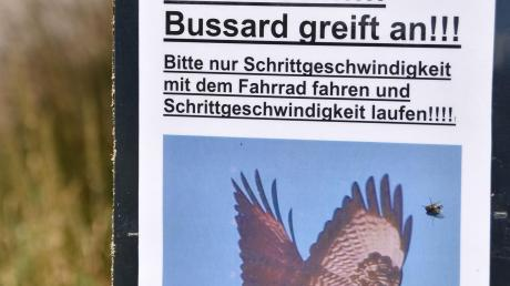 Copy%20of%20Gosheim_Bussard_5.tif