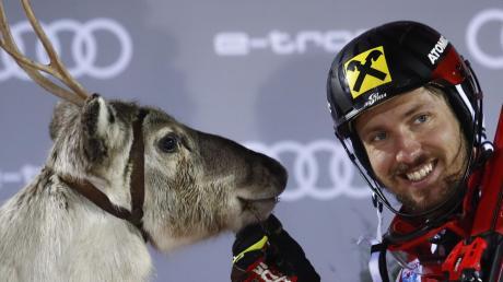 Die Sieger des Slaloms in Levi bekommen traditionell ein Rentier geschenkt. Marcel Hirscher fügte seiner kleinen Herde am Sonntag ein weiteres Tier hinzu.
