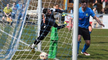 Jeder Fehler wird bestraft. Auch gegen den FC Kempten schlug es hinter Cosmos-Keeper Valentin Coca ein, nachdem seine Vorderleute den abgewehrten Ball nicht nachhaltig klären konnten. Xhevalin Berisha (rechts) sieht's mit Schrecken.
