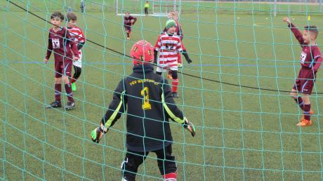 Noch steht im Tor – doch Fußball bis zur U9-Jugend soll künftig ohne Keeper gespielt werden. Manche finden das gut, andere kritisieren die geplante Reform des Bayerischen-Fußball-Verbands.