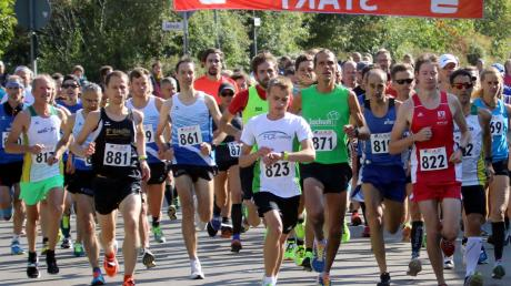 Der Adelzhausener Benjamin Dillitz (Startnummer 881) gehört über die zehn Kilometer am Sonntag in Aichach zu den Titelkandidaten. Im vergangenen Jahr siegte Dillitz beim Wittelsbacher Straßenlauf. Die Konkurrenz ist in diesem Jahr allerdings groß.