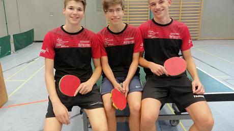 Siegten zum Auftakt: das erste Jungenteam des TSV Aichach: (von links) Fabian Schweizer, Rafael Konrad und Matthias Ostermair.