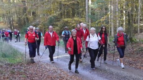 Nordic_Walking_2019_Etappe_in_Burtenbach(1).jpg