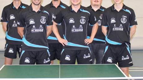 Die 1. Herrenmannschaft des TSV Königsbrunn (von links Ronny Schönborn, Sebastian Steckermeier, Christian Schupp, Angelo Bannout, Marc Heinle und Florian Lippert) konnte einen Sieg einfahren.